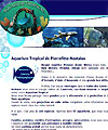 aquarium-tropical-pierrefitte